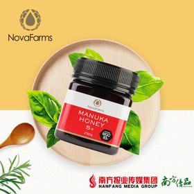 【全国包邮】星官庄麦卢卡蜂蜜 5+(250g/瓶)