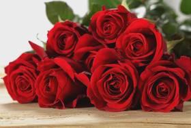 【福利爆款】玫瑰鲜花礼盒(需提前五天预定)