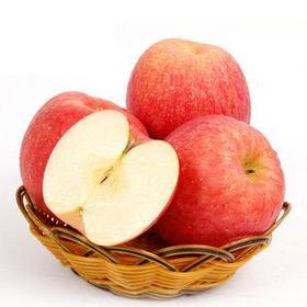 【安全配送】烟台红富士苹果5斤装