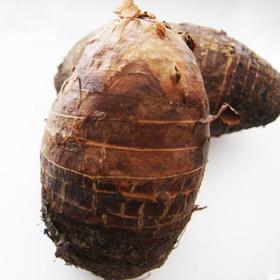 本地大芋头(槟榔芋)/斤,检测合格,无公害