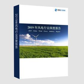 《2019年风电行业深度报告》纸质版