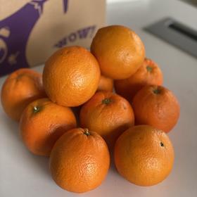 【三环之内免费配送】19.9元抢伦晚橙子9.5斤!