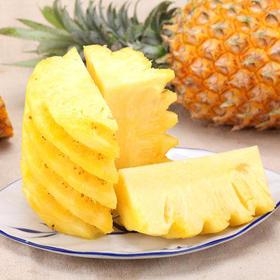 【精选】湛江徐闻香水小菠萝水果凤梨 | 香甜可口 肉质脆嫩 | 2-9斤装 包邮【应季蔬果】