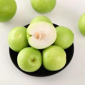 漳州贵妃枣5斤装 | 大青枣密枣脆甜新鲜当季水果苹果枣【应季果蔬】