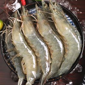 4斤装青岛大虾超大海虾新鲜基围虾