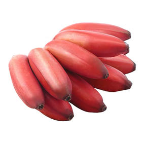 【稀有水果】福建红皮美人蕉口感香甜软滑