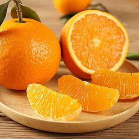 四川青见柑橘丑橘之母被誉为柑橘皇后汁水爆棚营养丰富口感独特应季新鲜水果10斤整箱现摘现发