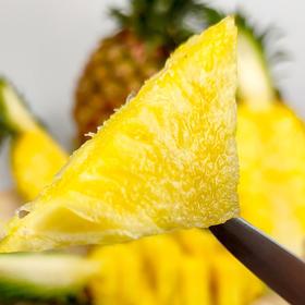 【金钻凤梨】酸甜多汁小凤梨 果子外观完好无碰伤 8成熟产地现摘现发 4.8-5.2斤(2-3个)