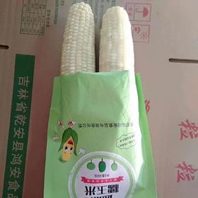 [E3~2D]速冻牛奶糯玉米棒450g