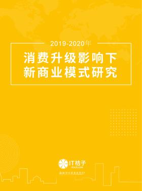 【2020新品】2019-2020年中国消费升级下新商业模式研究报告