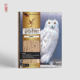 【美国进口】哈利·波特系列3D木制拼图套装