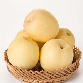 【山东】黄金奶油红富士脆甜多汁 皮薄肉厚