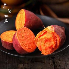 【精选】沙地福建六整红薯 | 现挖现发 甘甜可口 软糯细滑 | 5斤装【应季蔬果】