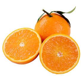 【精选】四川眉山青见柑桔5斤 | 酸甜爆汁特大果 | 汁甜如蜜 皮薄核小 | 5-9斤装【应季蔬果】