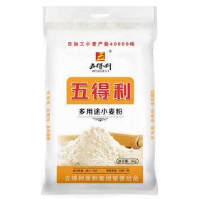 五得利面粉 六星多用途小麦粉5kg 家用 包子饺子馒头饼手擀面-872909