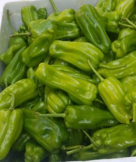 【赠品】青椒1斤