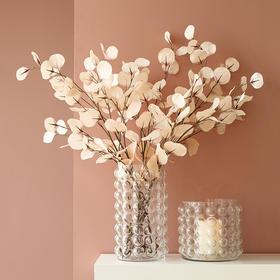 轻奢风泡泡透明玻璃花瓶现代简约创意客厅插花摆件大号装饰花器
