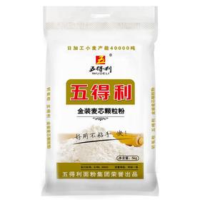 五得利面粉 金装麦芯颗粒粉5kg 家用优质面粉 馒头 包子 面条 饺子 手擀面多用途好面粉-872907