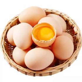 新余市 鸡蛋12个