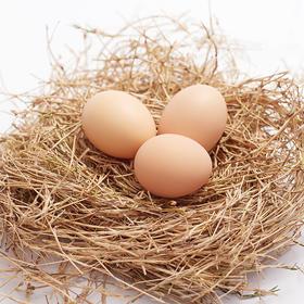 【助农】安徽助农土鸡蛋  蛋香醇正 营养丰富 30枚装