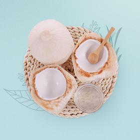 [海南文昌椰青 下单后1-3天内发出]天然椰香味 顺滑甘甜 6个起 赠开椰器、吸管