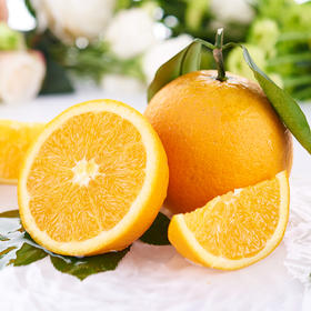 伦晚 帝王橙 新鲜当季水果 爆汁无渣  产地顺丰直发 5斤装