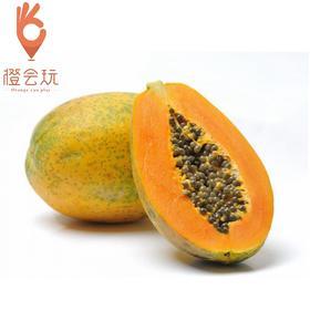 【整果】海南树上熟红心木瓜 精选大果