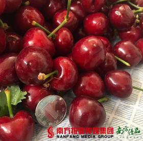 【珠三角包邮】烟台大樱桃   1.4斤±1两/ 箱