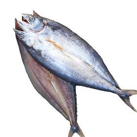 咸鲅鱼干 养马岛新货2条约800g 咸鱼干马鲛鱼干海鱼干哈皮猴水产干货-873919