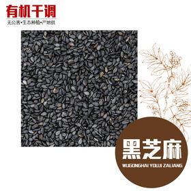 黑芝麻 精选500g 生态种植 有机香料-865675
