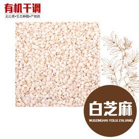 白芝麻仁 精选500g 生态种植 有机香料-865674