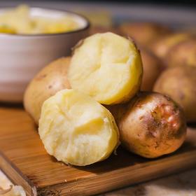 【云南 • 红皮土豆】高原上的小土豆 皮薄肉黄 肉质细腻  口感软糯 新鲜发货  吃法多样