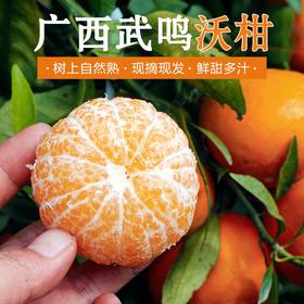 【精选】广西武鸣沃柑  |  鲜水果柑橘 爆甜多汁 新鲜现摘 | 5斤装 【应季蔬果】