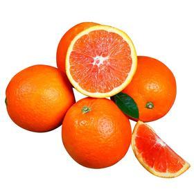 【基地下雨,发货延迟】网红脐橙中华红血橙 自家果园橙子 不打蜡不上色 净重5斤/9斤