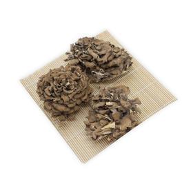 【精选】千百川灰树花80g | 层叠似菊 清香四溢 肉质脆嫩爽口【应季蔬果】