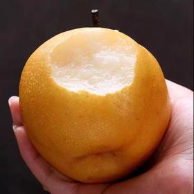 梨| 水分充足,甜度好。口感绵