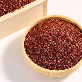 【精选】淘味来高原红藜麦|藜麦粮食之母 全营养食品 高海拔地区种植 无污染,蛋白质含量与牛肉相当 零胆固醇|400g/瓶【米面粮油】