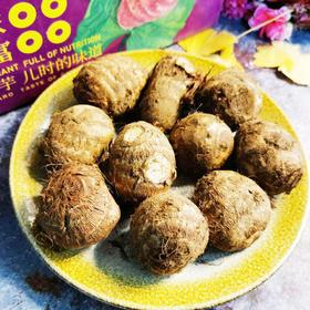 【半岛商城】奶油小芋头 5斤 50个左右 京津冀黑吉辽包邮