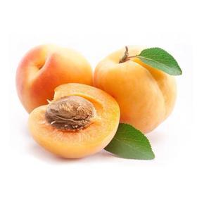 【陕西】大荔大黄杏 香甜多汁 肉厚核小