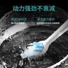 南极人 电动牙刷 【1手柄+2刷头 】柔软护齿 深层清洁