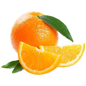 【湖北】秭归伦晚春橙汁多味甜 鲜嫩爽口