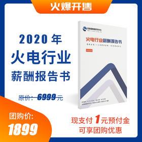 《2020年火电行业薪酬报告书》