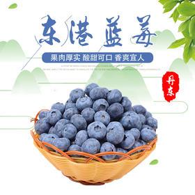 辽宁丹东东港北路蓝莓 新鲜采摘 现摘现发 125g/盒*4盒