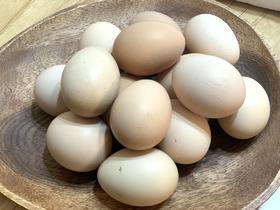 鱼头锅家收购的散养正宗土鸡蛋,蛋清粘稠,蛋黄韧性足,口感一级香!2元/枚,全川包邮!!