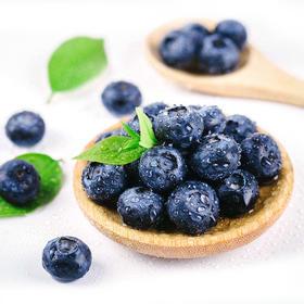 【云南】 高原露天蓝莓 新鲜蓝莓 露天蓝莓 顺丰空运包邮