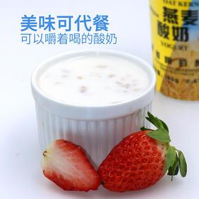 瑞缘燕麦仁酸奶  可以嚼着喝的代餐酸奶  原味黄桃味180ml*12罐