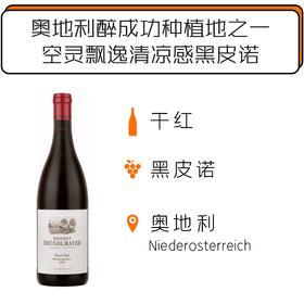 2015年布德梅尔酒园黑皮诺红葡萄酒 Weingut BründlmayerPinot Noir 2015