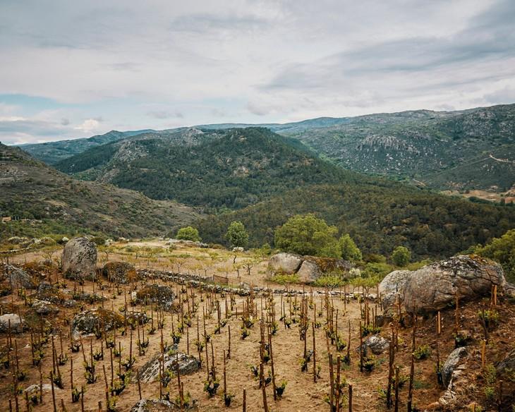 科学小飞侠酒庄 Comando G在格雷多斯产区(Sierra de Gredos)壮观而险峻的山坡葡萄园,耕作极为不易