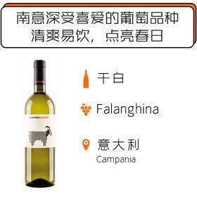 2018年圣萨瓦多法朗奇纳干白葡萄酒 San Salvatore La Capranera Falanghina Campania 2018