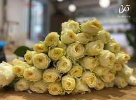 A级暖玉-花园玫瑰